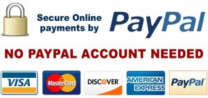 processing-credit-cards-through-PayPal-2